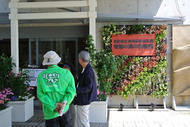 奇跡の星の植物館入り口
